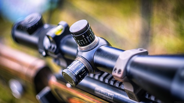 The Best Scope for Ruger 10/22 Increases Your Long-Range Shot