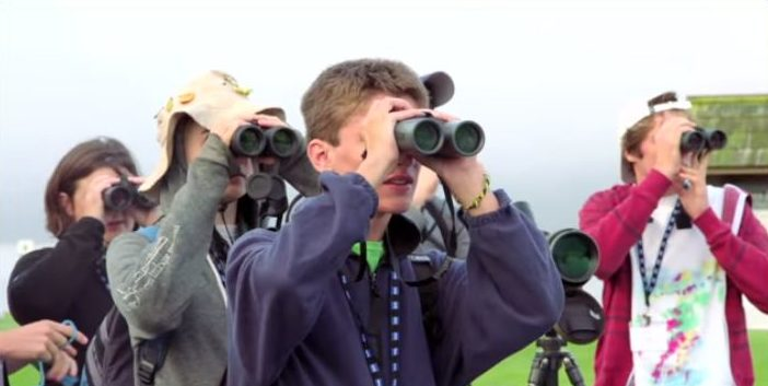 The Best Binoculars Under $100 for Tight Pockets